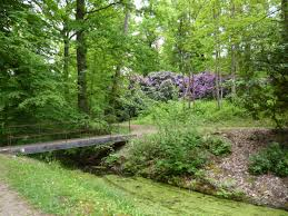Exhib forêt de Montgé-En-Goele 77